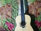 Statsun CAG classical nylon string acoustic guitar