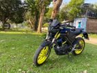 Yamaha mt 15 ( Bs4) 2019