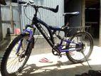 HAITOLIC CYCLE
