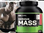 Bodybuilding/Gym Massgainer ON serious Mass