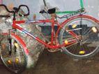 Nice Cycle