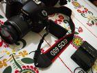 Canon EOS 60D_____DSLR