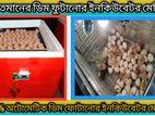 Egg incubator machine ১৫০ ডিম ফোটানোর সেমি অটো ইনকিউবেটর মেশিন।