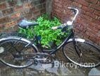 Viking Downtown 3 Speed Bike