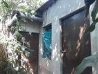 টিনশেড বাড়ি সহ জমি বিক্রি @ উত্তরখান