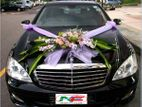 Mercedes-Benz E-Class & S-Class Daily or Monthly Rent