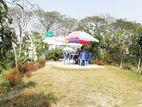 কাঁচা বাজারের পাশে plot @ BS group