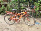 Phoenix Bicycles