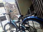 Duranta cycle for kids