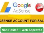 website + domain hosting adsense