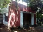 Single Large Room with Attached Bathroom and Verandah for Rent