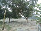 5 Katha Plot in Purbachal by Navana