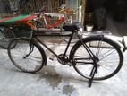 Raleigh Db Traditional