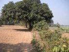 মিরপুর ১ নম্বর থেকে ৫ কিঃ মিঃ দুরত্বে ১০ শতাংশ জমি