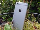 Apple iPhone 6 1/64 GB (New)