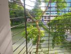 Lake view flat for rent in Dhanmondi Road 1.