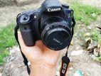 Canon 60D+50mm prime