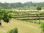 Exclusive:South Facing 5 Katha Plot At Purbachal,Sector-08