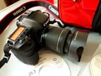 Canon 7D (Japan) with STM Lens