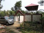 Bagan Bari for sell