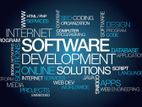 Any Types of Software Development