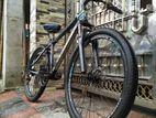Phoenix 10 Gear Running Cycle