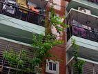 Beautiful Apartment Dhaka Real State Mohd.pur
