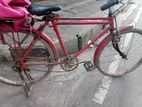 Bicycles sale