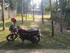 Land for sell / পঞ্চগড় শহরে জমি বিক্রয়