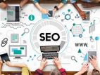 Website SEO for Business