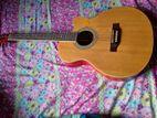 Deviser Guitar | Model JA4040N