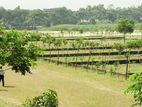 Exclusive- North Facing 3 Katha Plot At Purbachal, Sector-09