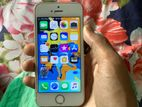 Apple iPhone 5S Gold 16GB (Used)