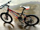 Used Phoenix Bicycle