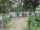 5 katha land at Banani road 17